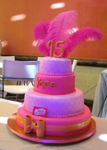 TLBH XV años 31 plumas rosa